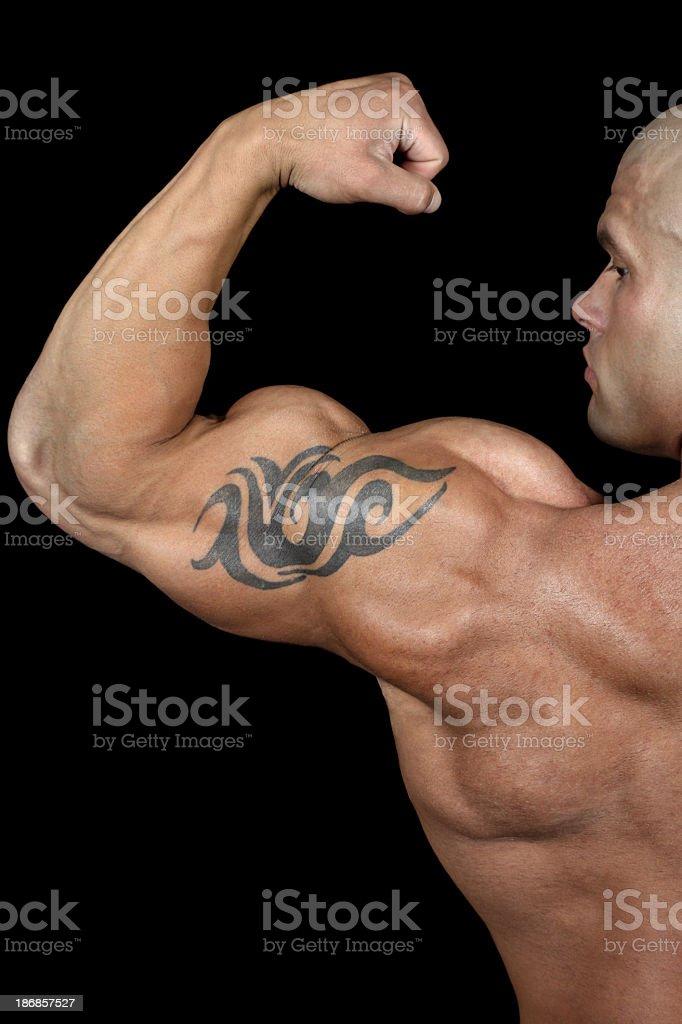 Powerful biceps royalty-free stock photo