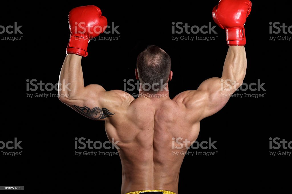 Powerful fighter royalty-free stock photo