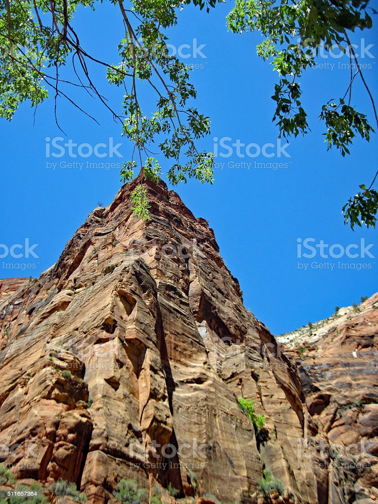 Powerful Mountain Top In Summer at Zion National Park stock photo