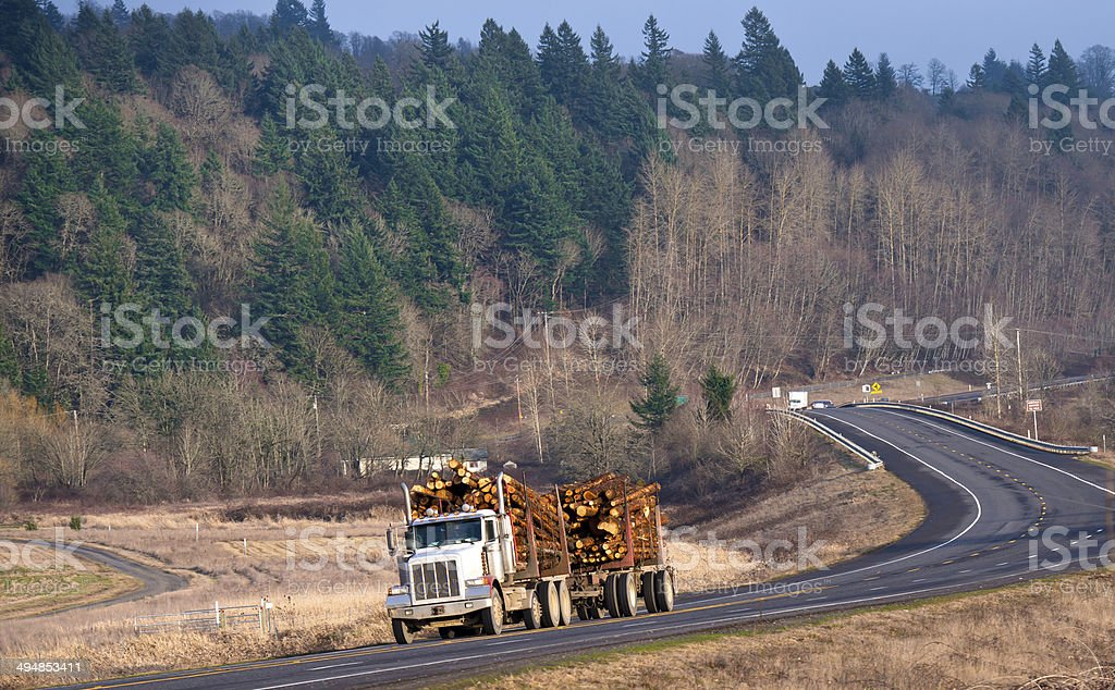 Potente semi-camion con un rimorchio trasporto log foto stock royalty-free