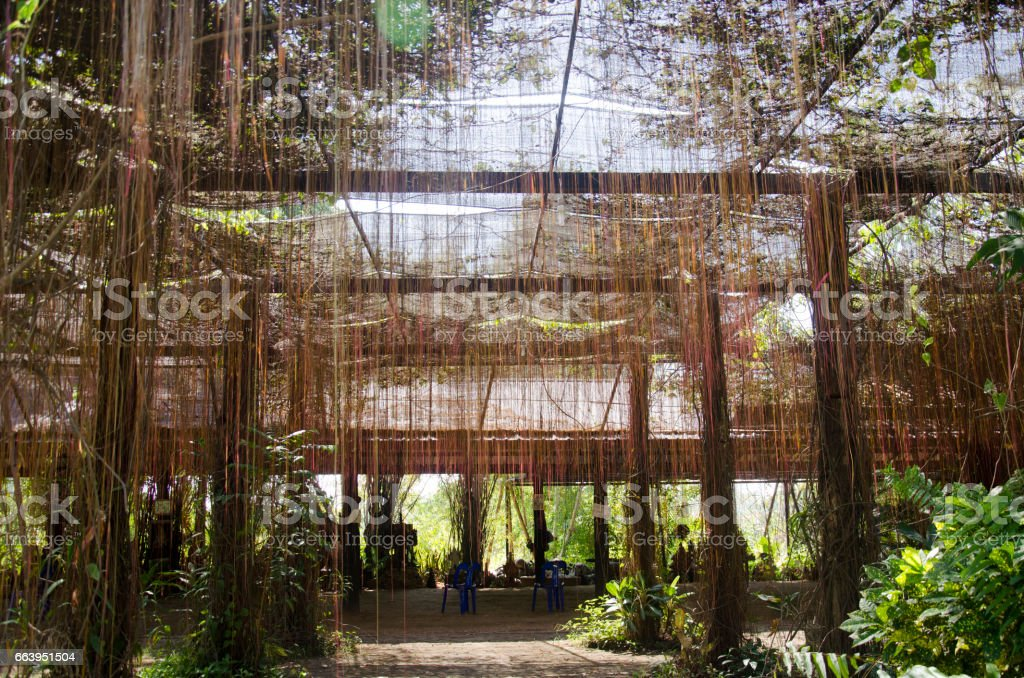 Practice the dharma outdoor space place for people meditation stock photo