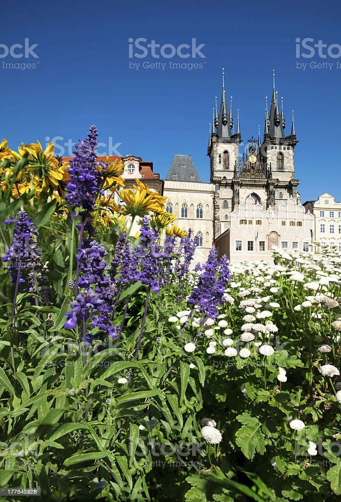 Prague, Church of Mary before Tyn in flowers royalty-free stock photo