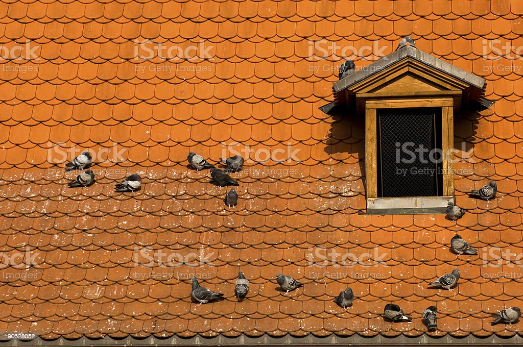 Prague's red roof royalty-free stock photo