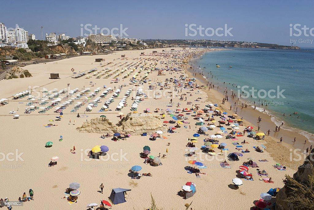 Praia da Rocha stock photo