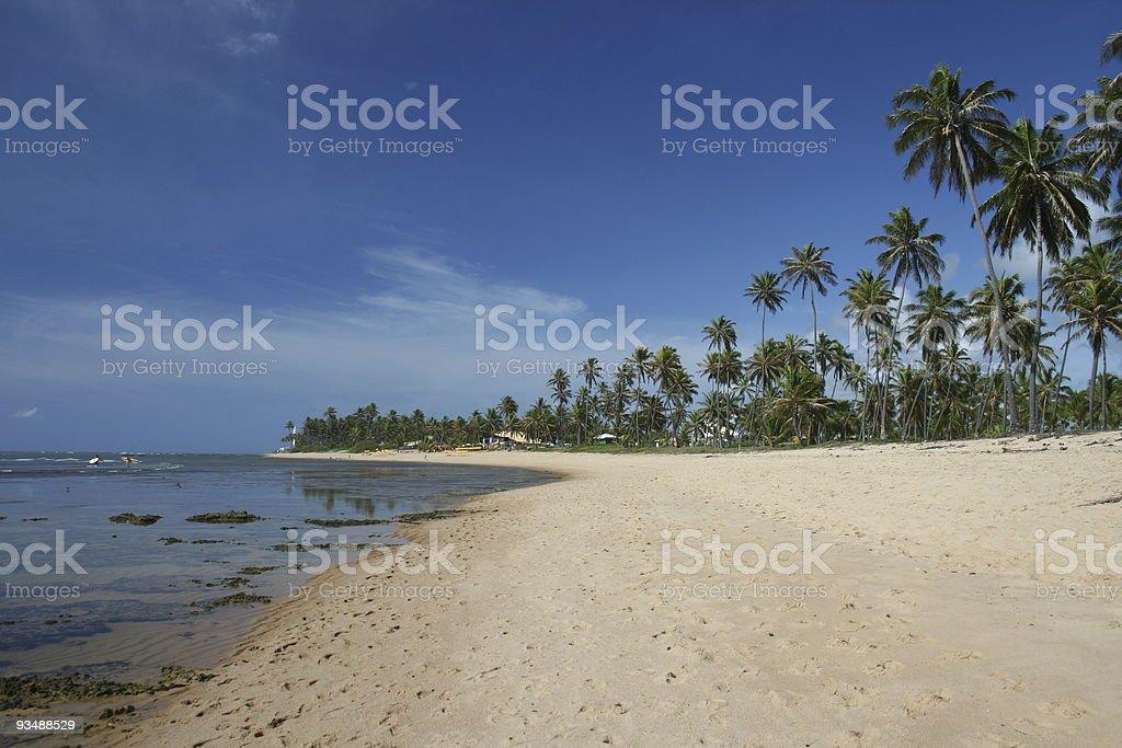 Praia do Forte stock photo