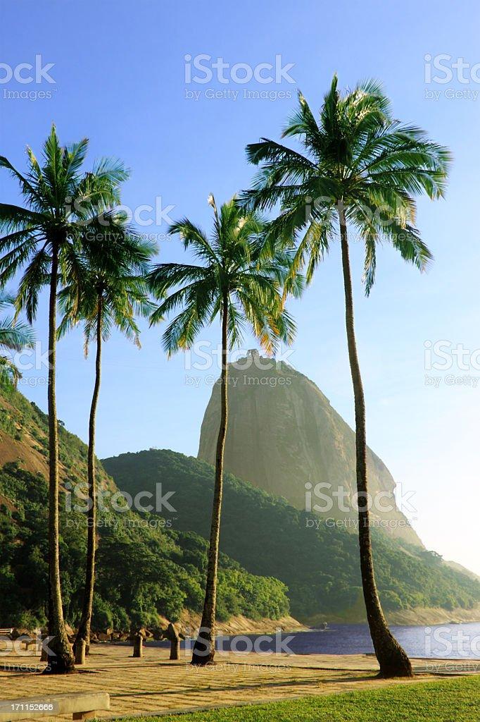 Praia Vermelha in Rio de Janeiro royalty-free stock photo