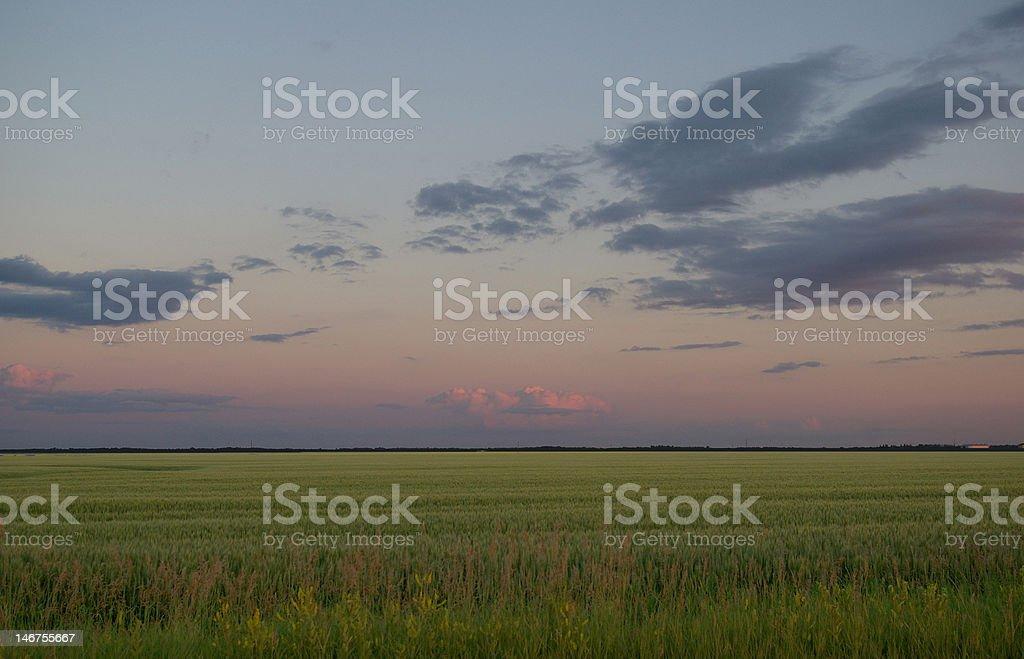 Prairie Dusk royalty-free stock photo