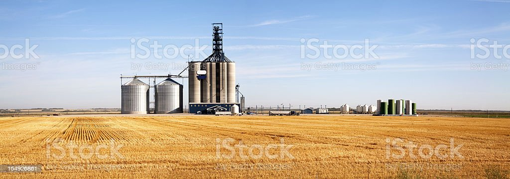 Prairie Elevator And Grain Bin royalty-free stock photo