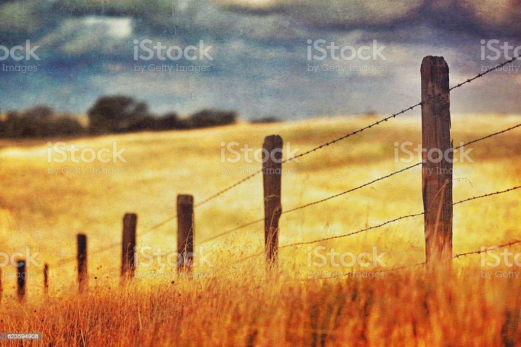 Prairie Fenceline stock photo