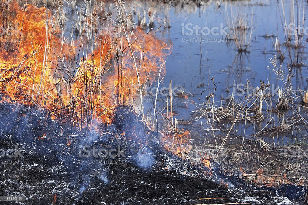 Prairie Grass Fire near Pond Water royalty-free stock photo