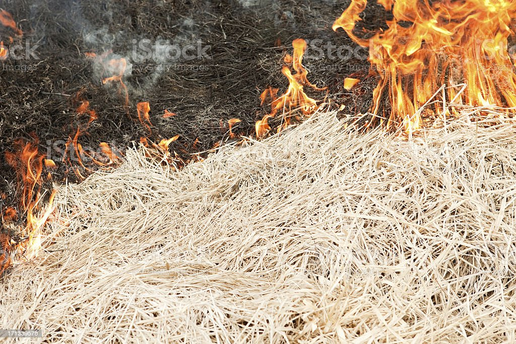 Prairie Grass Wildfire royalty-free stock photo