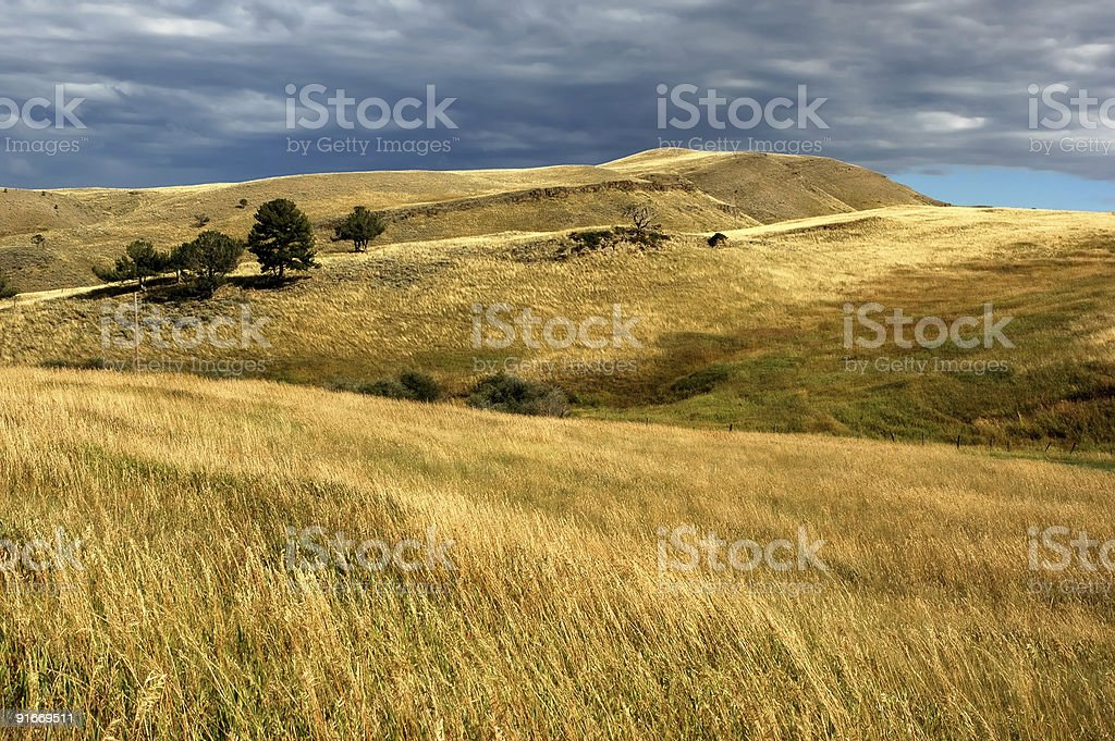 Prairie landscape royalty-free stock photo