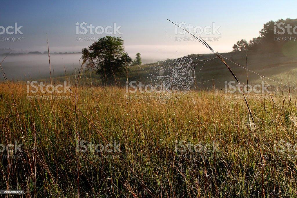 Prairie Morning stock photo