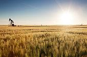 Prairie Oil, Saskatchewan