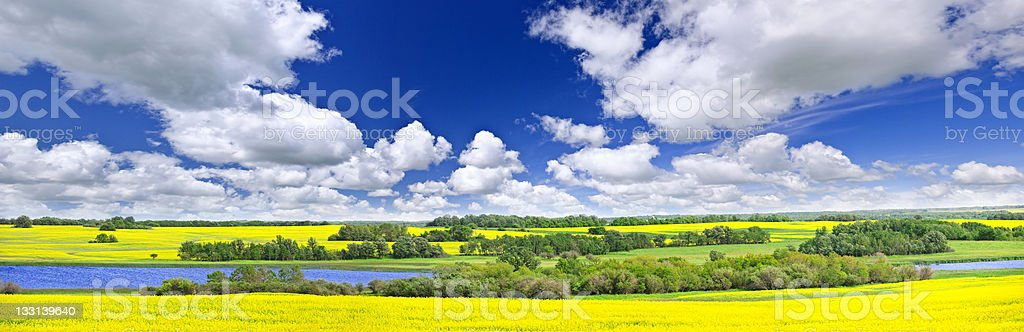 Prairie panorama in Saskatchewan, Canada stock photo