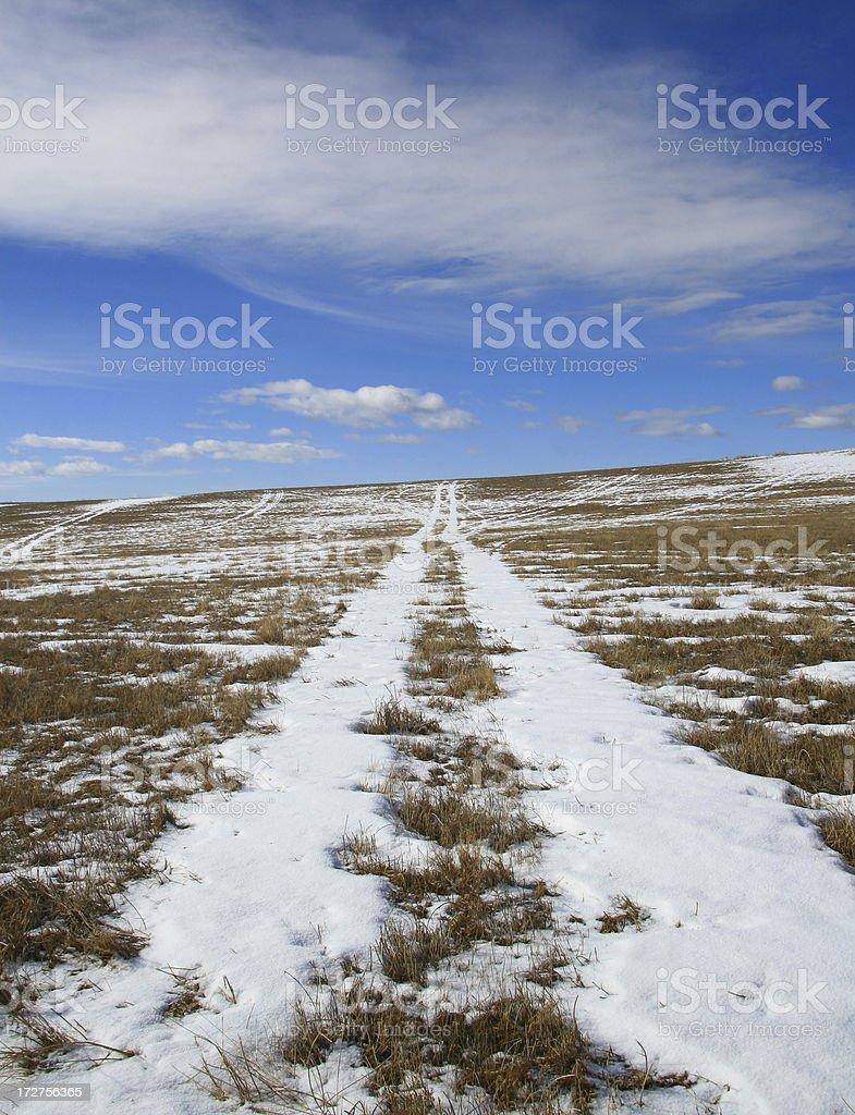 Prairie Path royalty-free stock photo