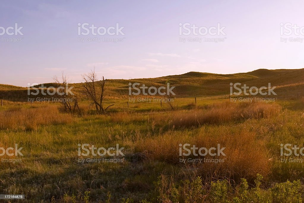 Prairie royalty-free stock photo