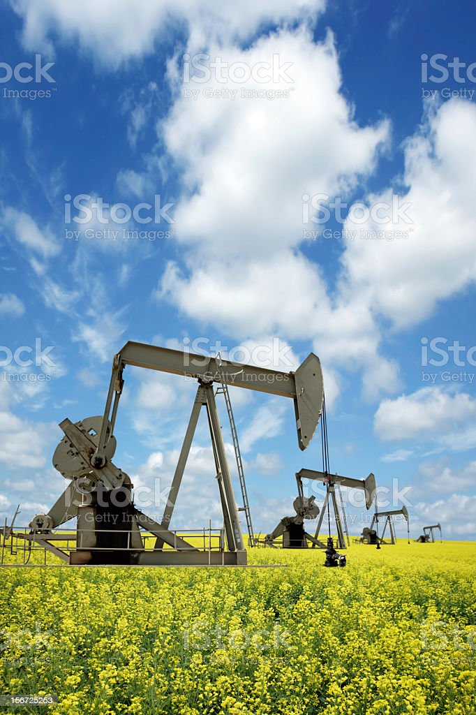 XXXL prairie pumpjacks royalty-free stock photo