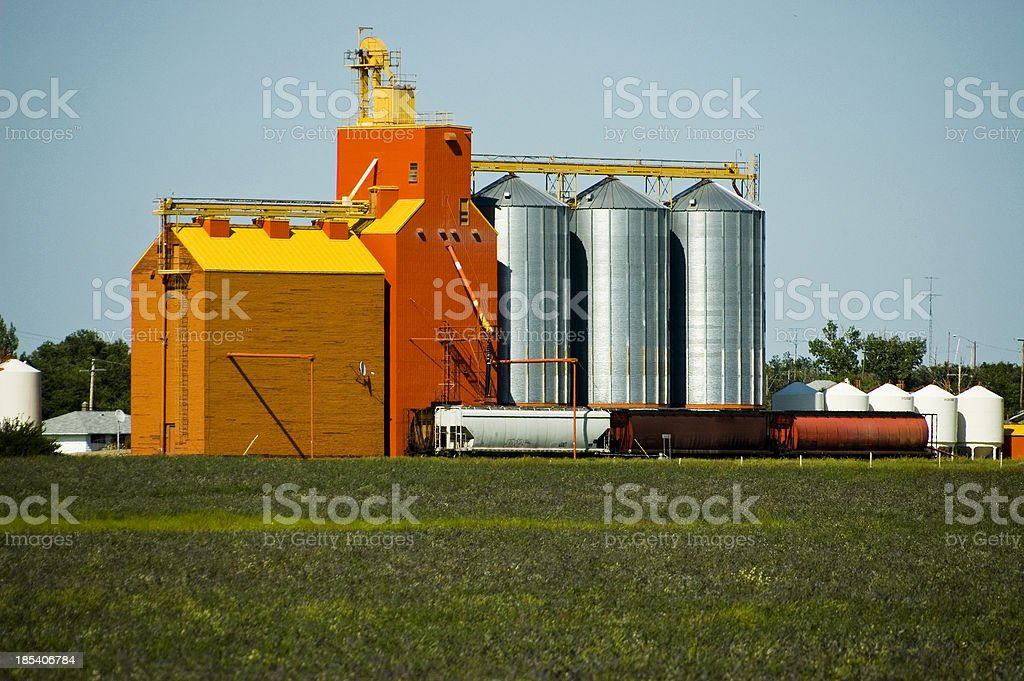 Prairie Sentinel royalty-free stock photo