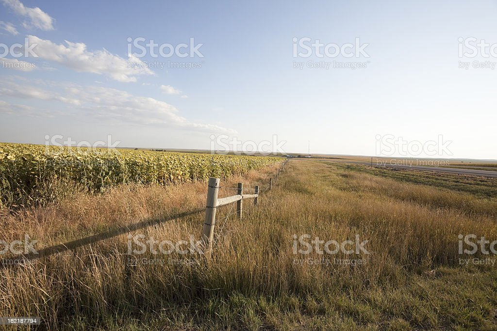 Prairie Series stock photo