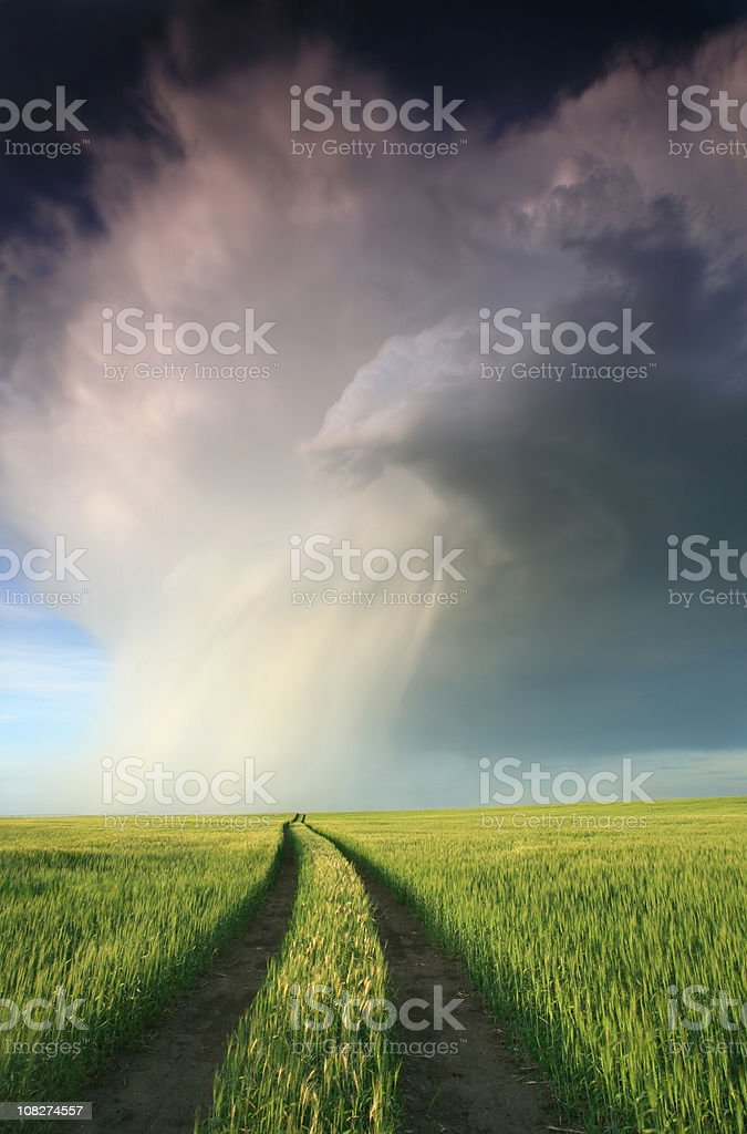 prairie thunderstorm two tracks of tires stock photo