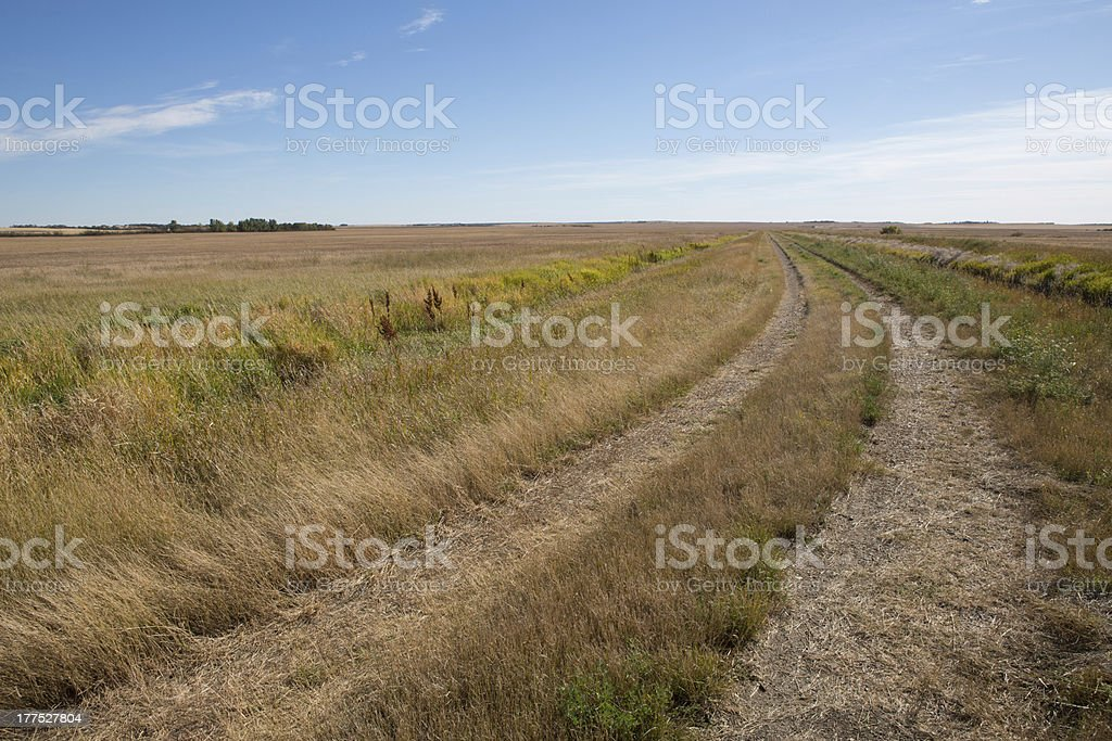 Prairie trail in late summer royalty-free stock photo
