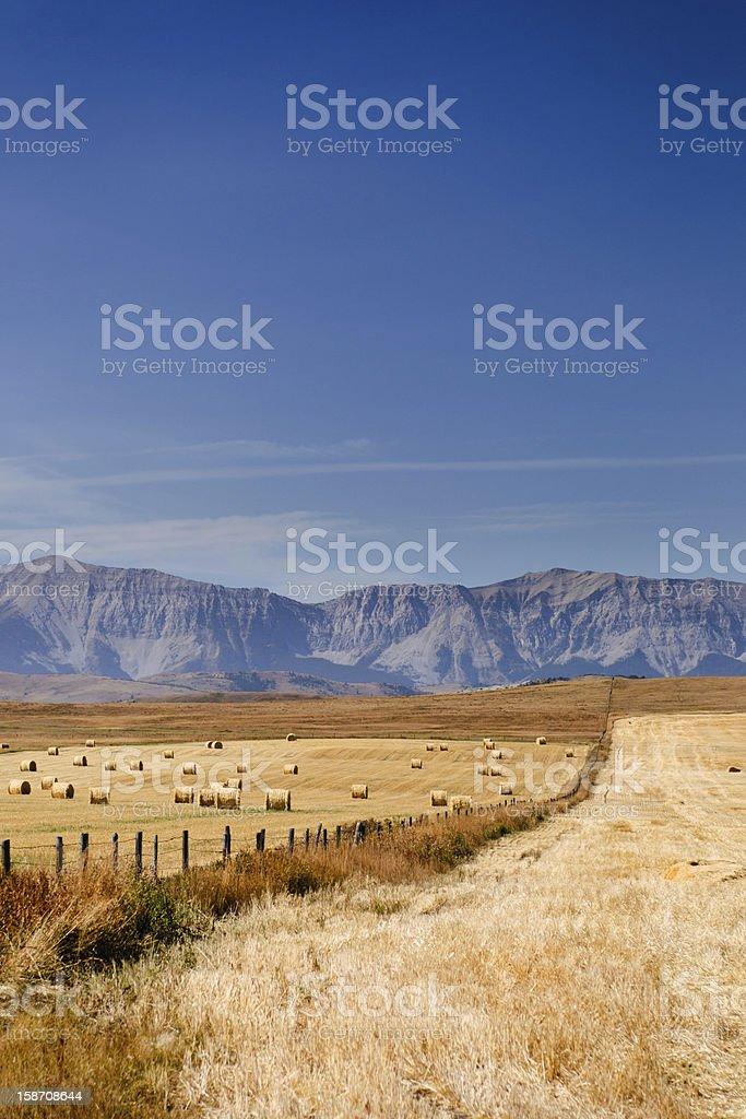 Prairie Views royalty-free stock photo