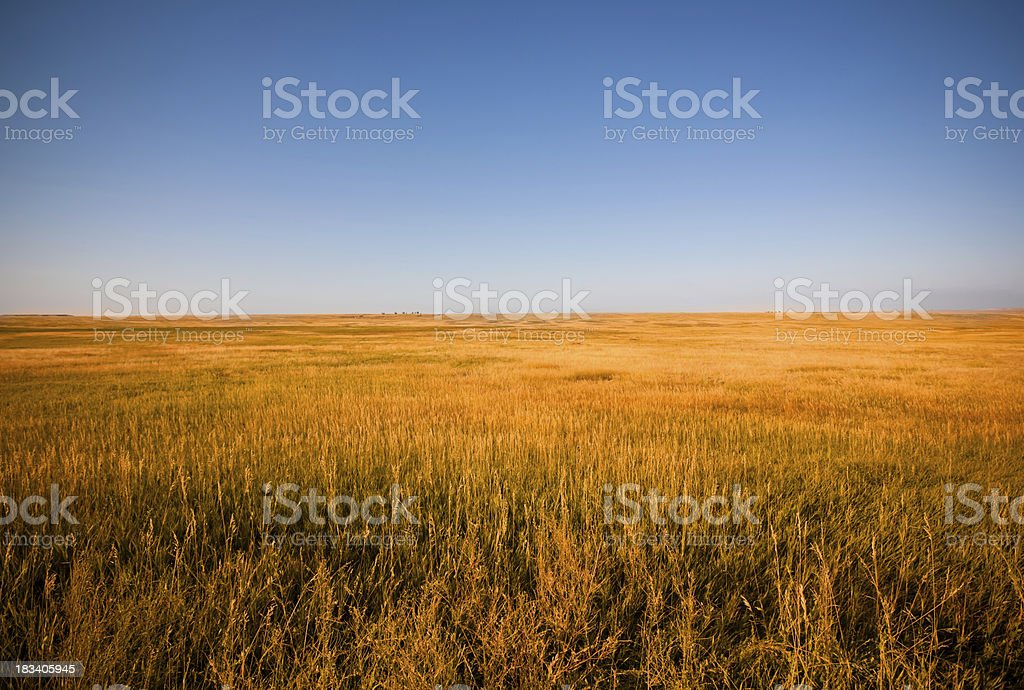 Prairies at sunset -landscape royalty-free stock photo