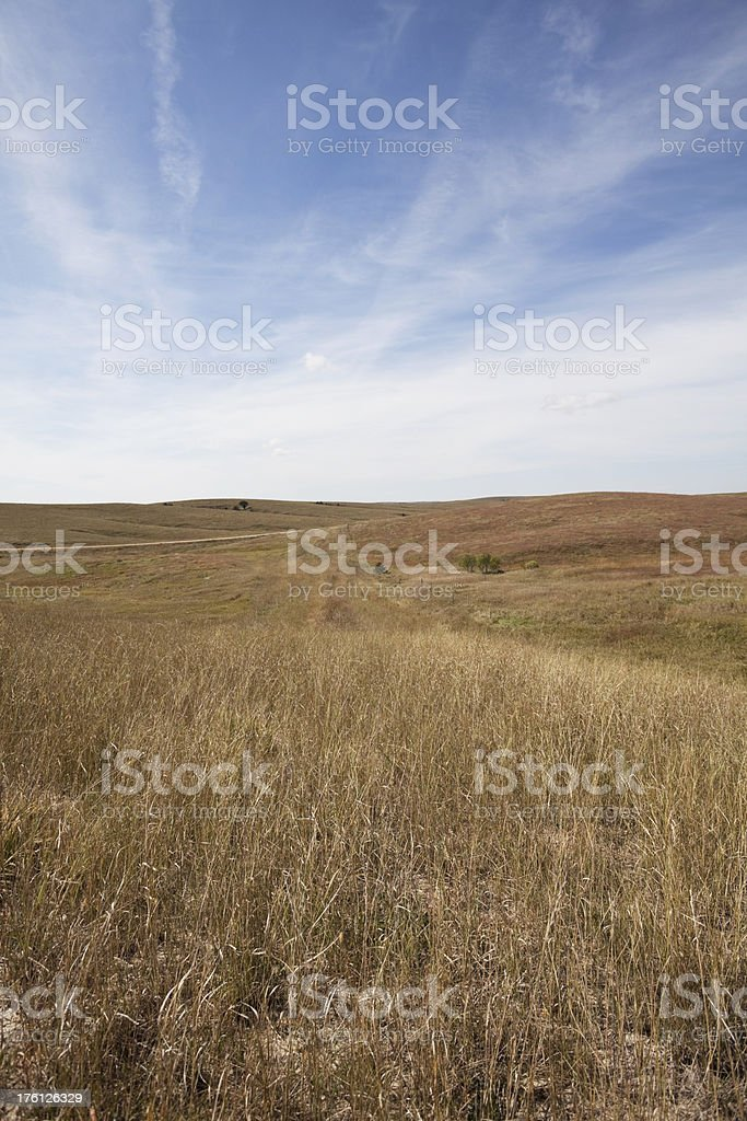 Prairies Series royalty-free stock photo