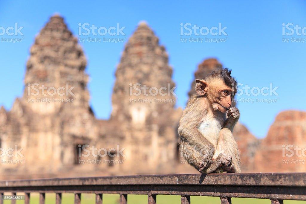 Prang Sam Yot stock photo