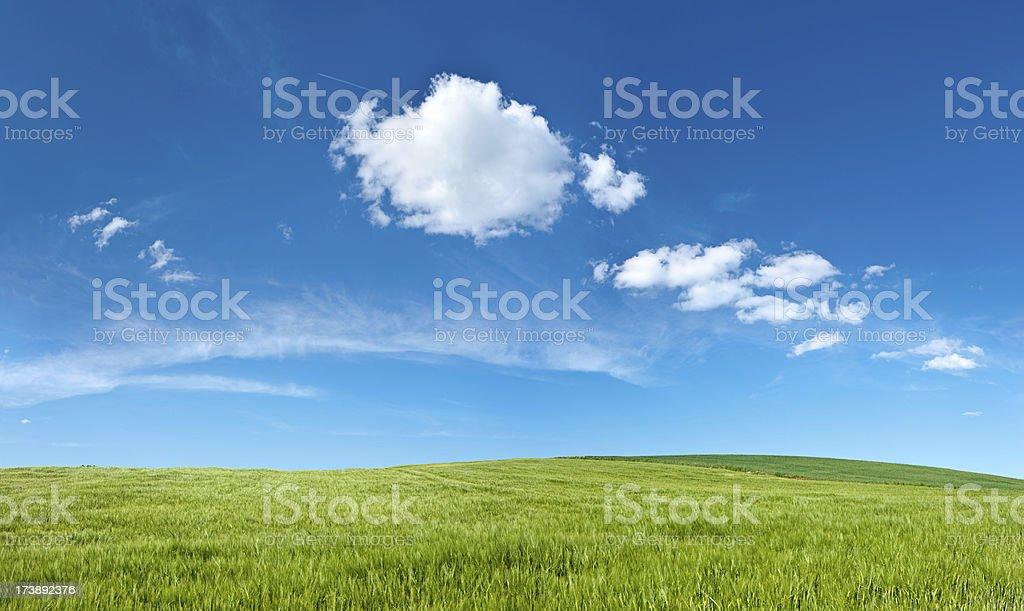 Pranoramic spring landscape 42MPix XXXXL- meadow, hills, blue sky royalty-free stock photo