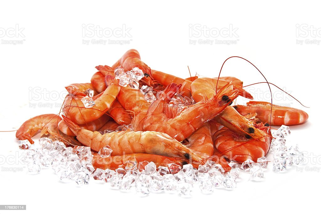 Prawns on Ice stock photo