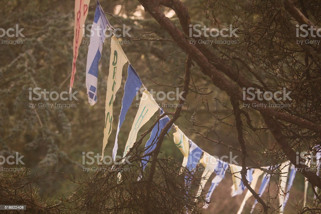 Prayer Flags in the Forest stock photo