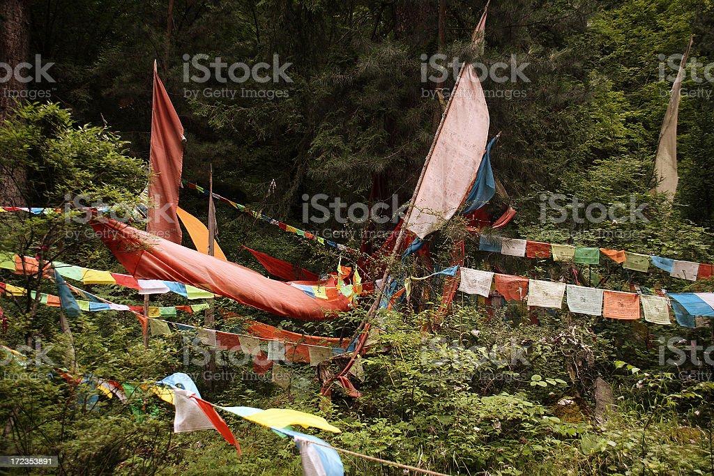 Praying flags royalty-free stock photo