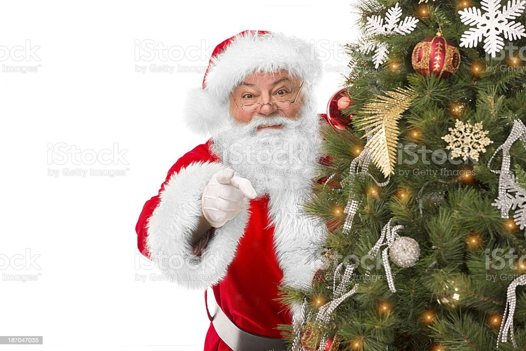 PReal Santa Claus pointing from behind Christmas Tree royalty-free stock photo