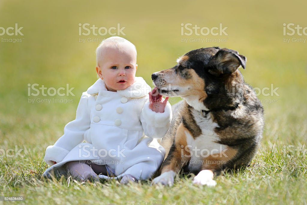 Precious 1 year old Baby Girl Sitting Outside with Dog stock photo