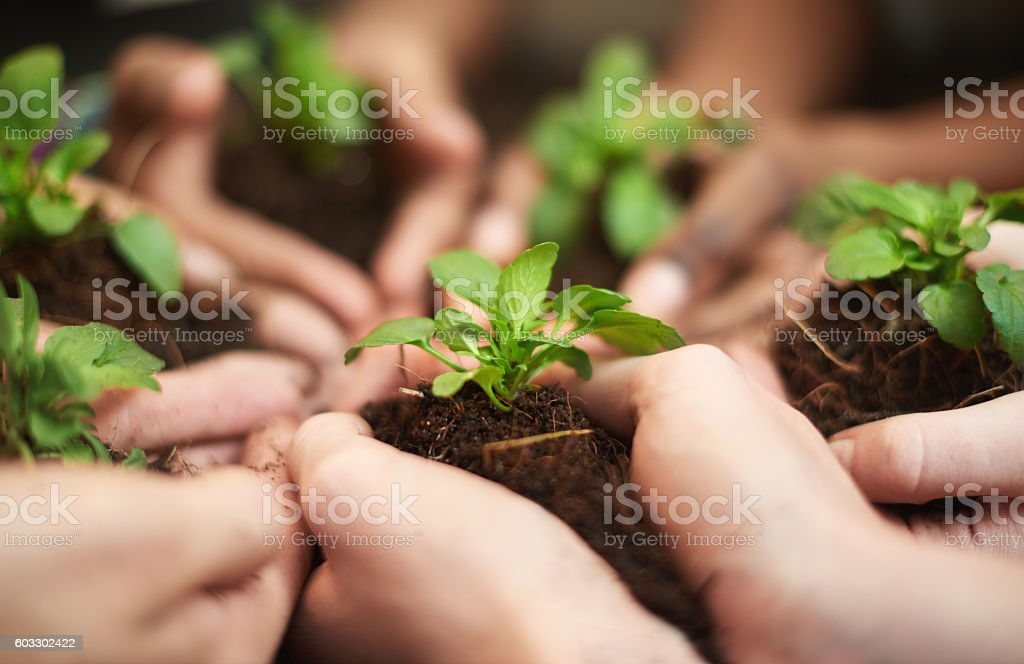 Precious resources stock photo
