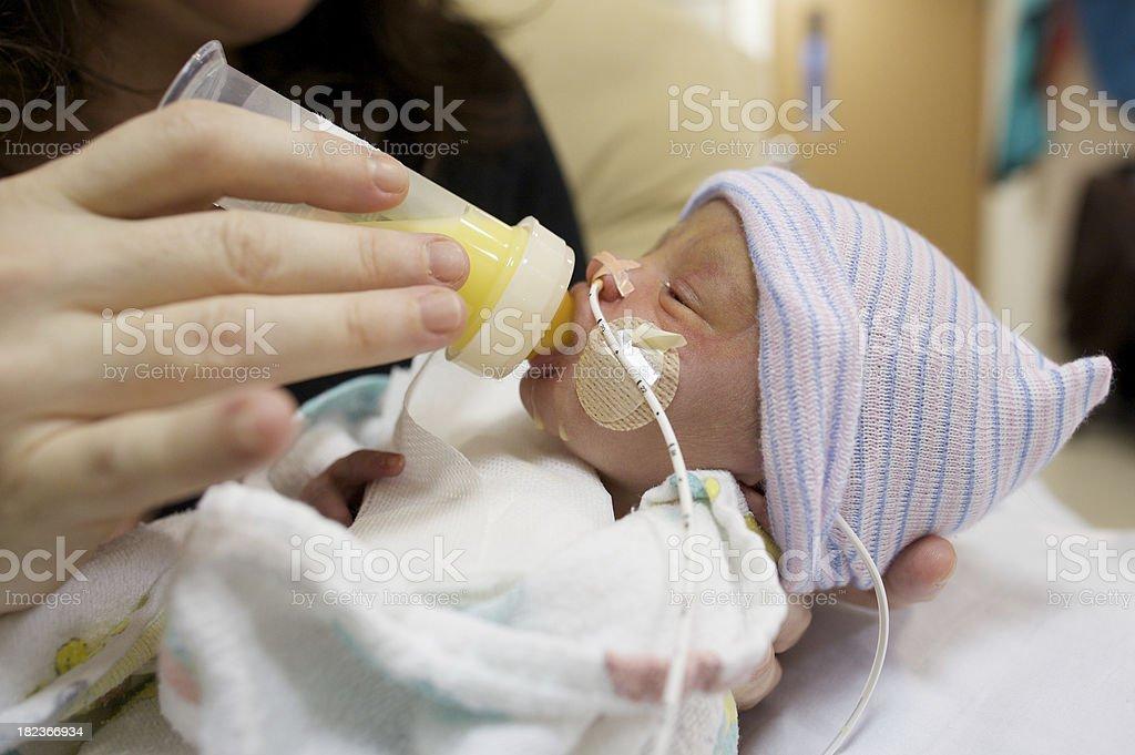 Preemie Feeding stock photo