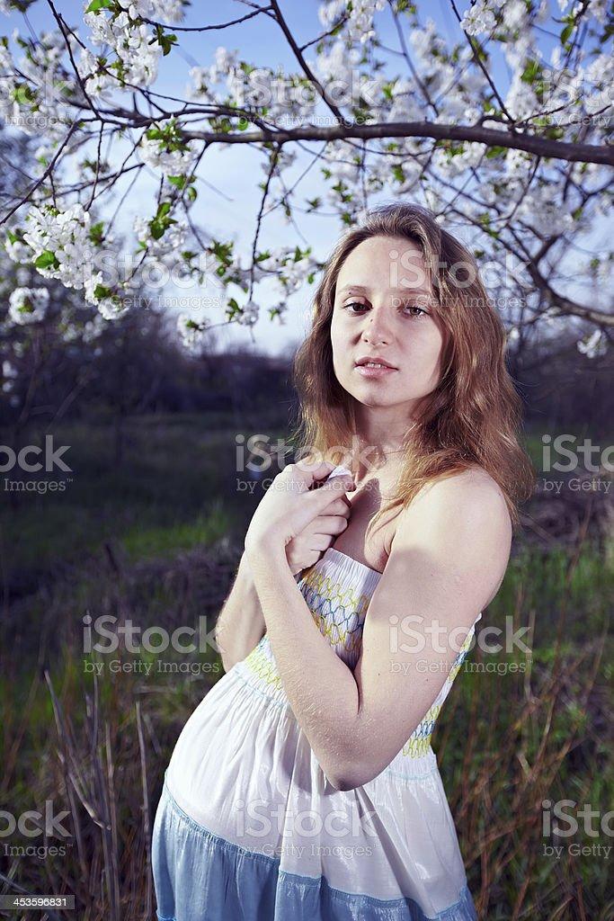 Ragazza incinta in un albero foto stock royalty-free