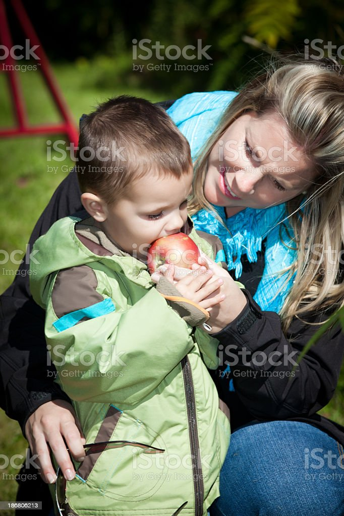 Pregnant Mother and Son in Orchard Eating Apple royalty-free stock photo