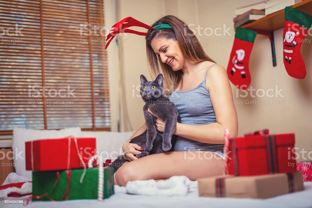 Pregnant woman at home with her cat for Christmas stock photo