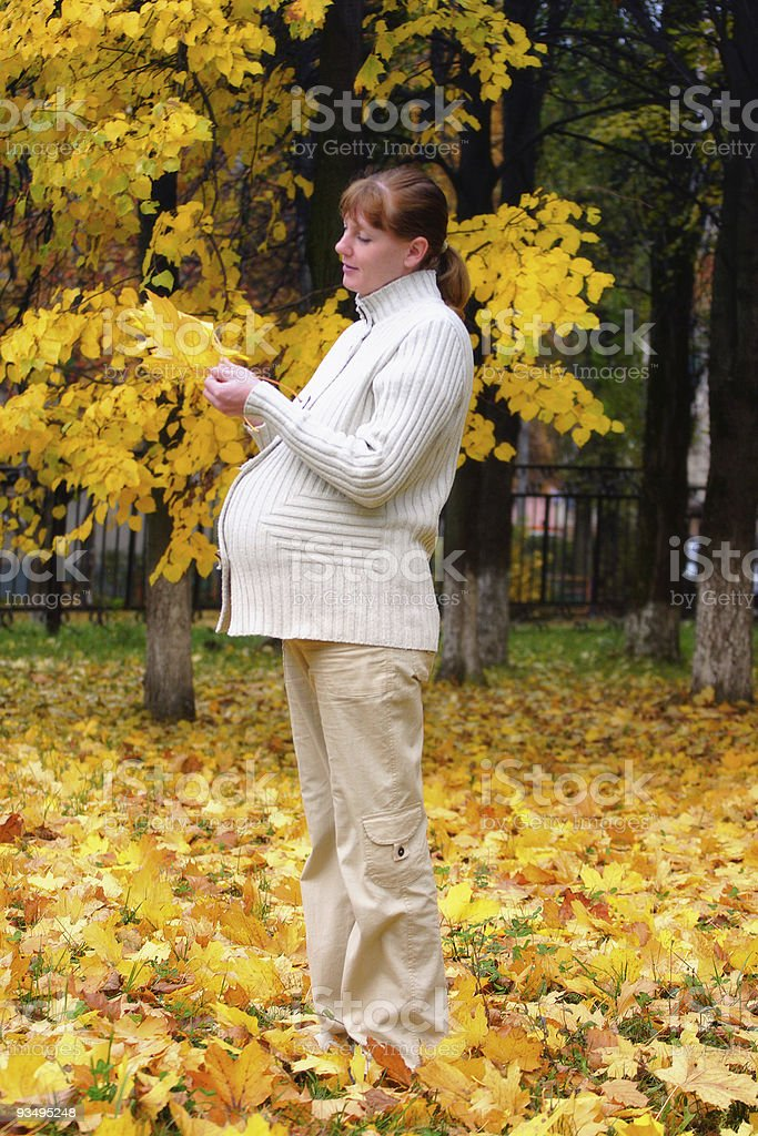 Pregnant woman in autumn park hold maple leaf royalty-free stock photo
