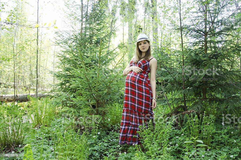 Mulher grávida foto de stock royalty-free