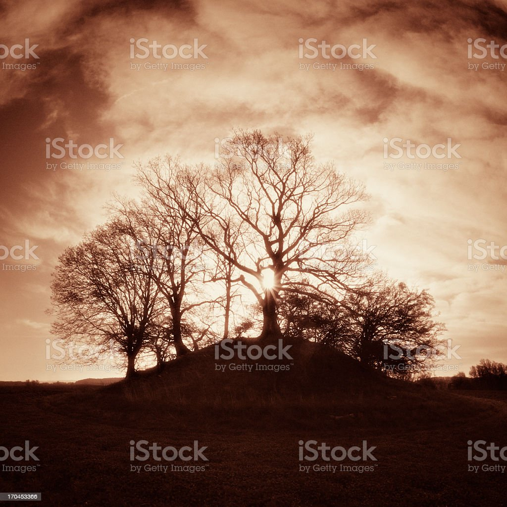 Prehistoric Burial Mound Backlit by the Sun stock photo