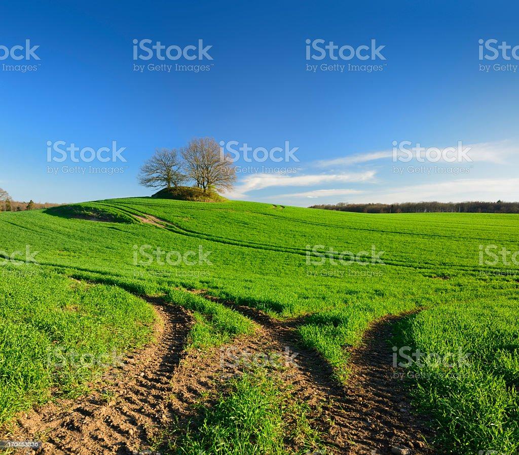 Prehistoric Burial Mound in Spring Field Landscape stock photo