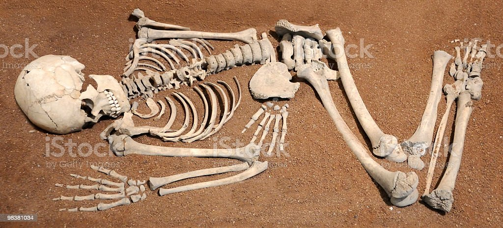 Prehistoric Man royalty-free stock photo