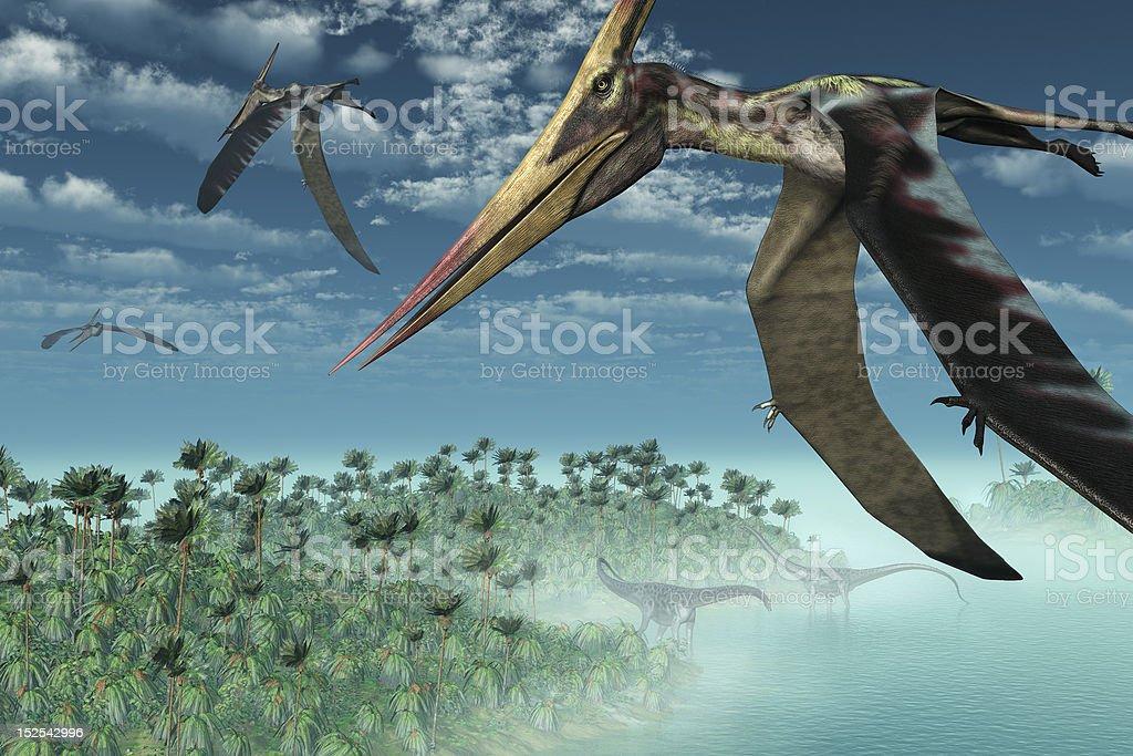 Prehistoric Morning - Flying Overhead stock photo