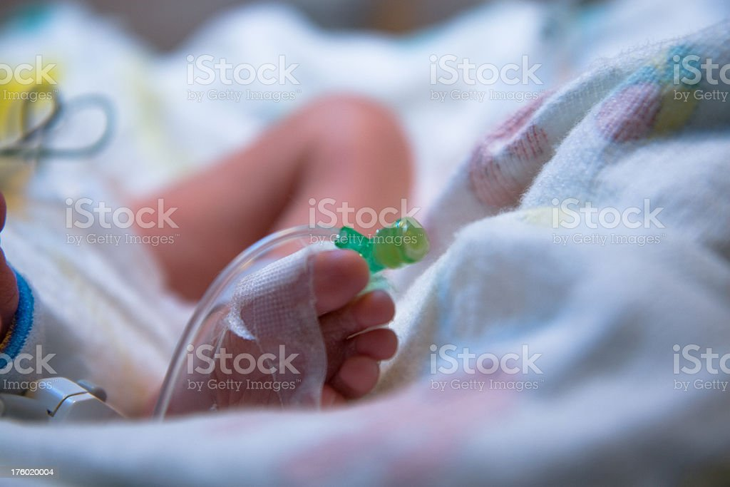 Premature Infant foot with IV Line stock photo
