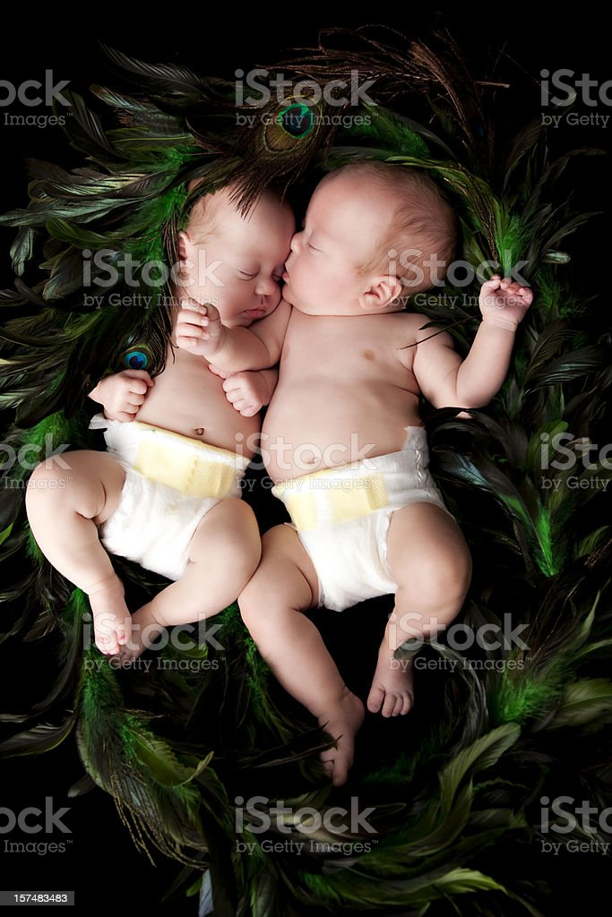 Premature Infant Twins in Diapers and a Nest of Feathers royalty-free stock photo