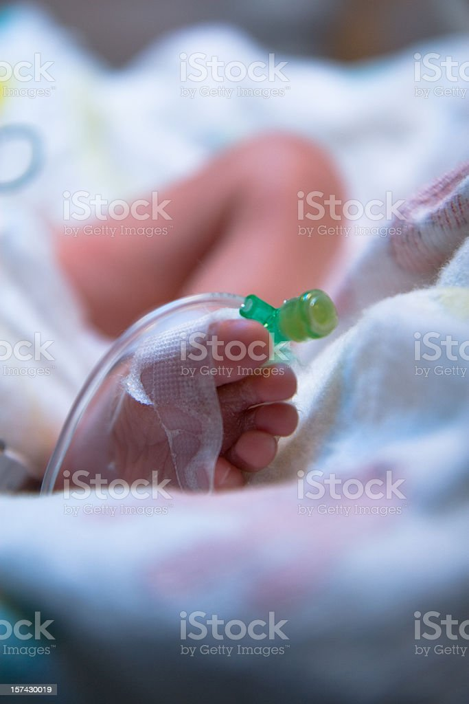 Premature Infants Foot with IV royalty-free stock photo